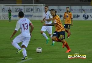 Armellino, foto Pinto